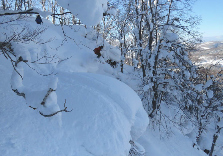 Who said Japan cat skiing wasn't steep?!