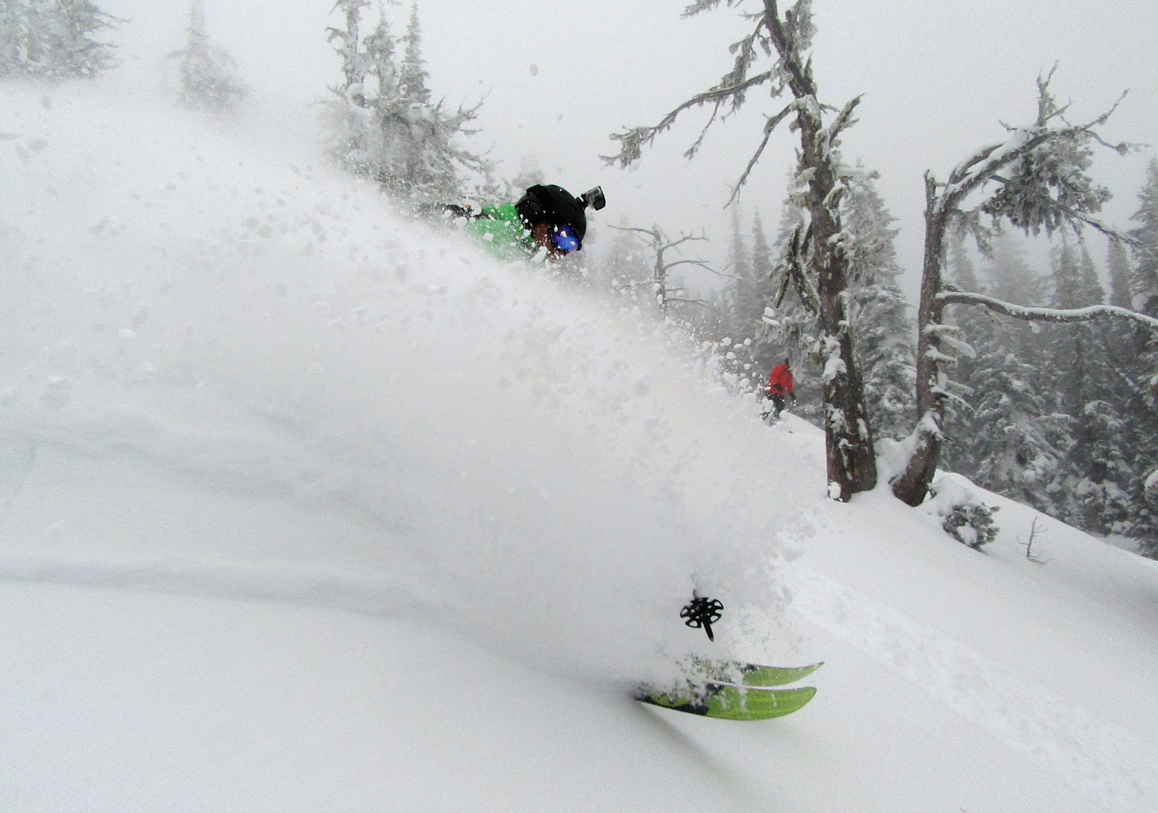 Top Dog shredding pow