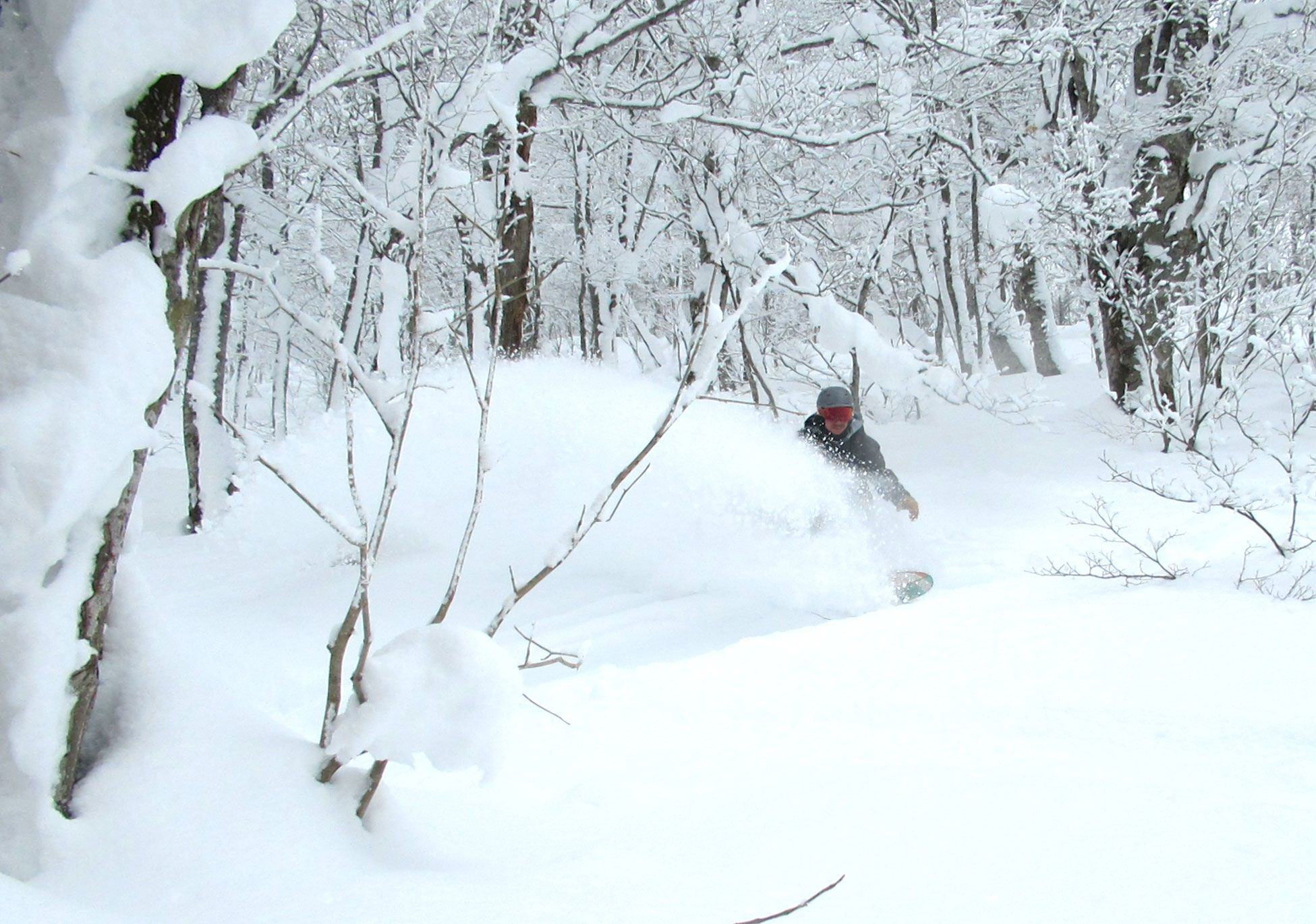 Our guide finding plenty of pow stashes