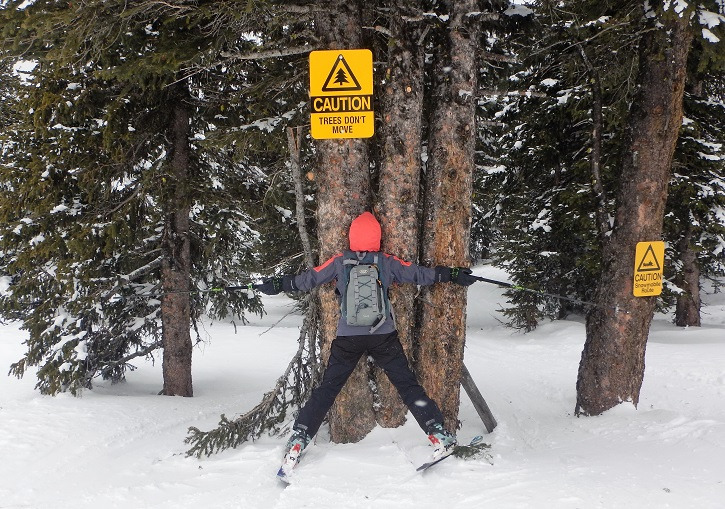 Tree skiing at Apex is very good!