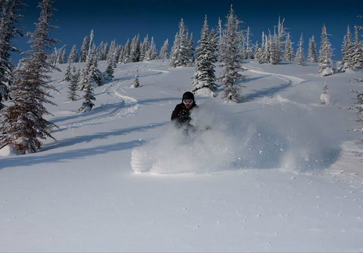The powder at Big Red Cats can be light and dry