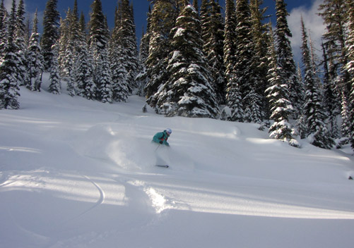 Fernie Wilderness Cat Skiing