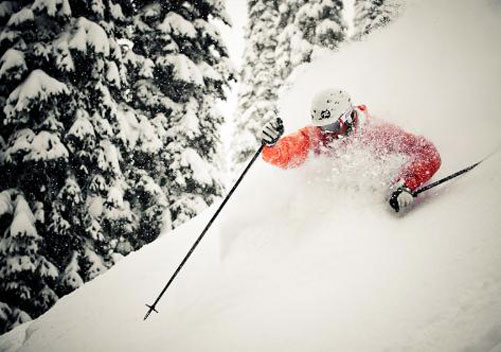 Mustang Powder Cat Skiing Revelstoke