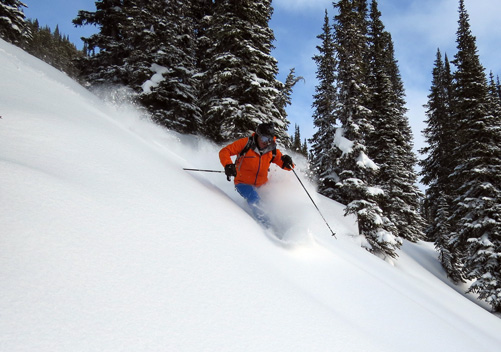 Selkirk Wilderness Skiing: gorgeous powder