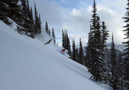 Selkirk Wilderness Cat Skiing