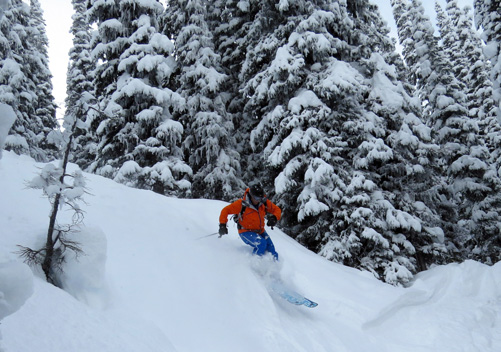 This is a must for all avid & experienced powder skiers
