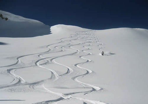 Excellent Heli Ski Terrain for Advanced Riders