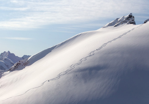 Miles of Untracked Powder