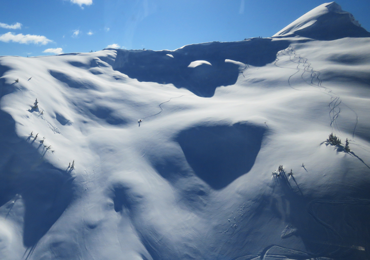 Northern Escape Heliskiing - plenty of terrain to choose from