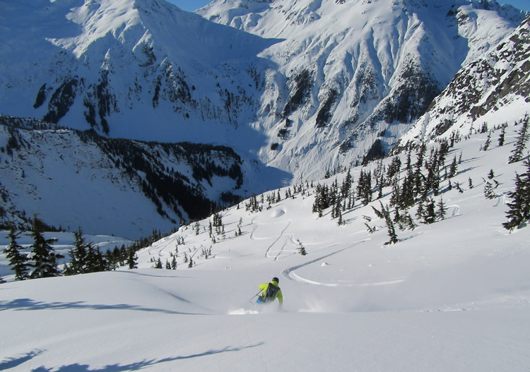 Northern Escape Heli Skiing has plenty of fantastic sub-alpine terrain