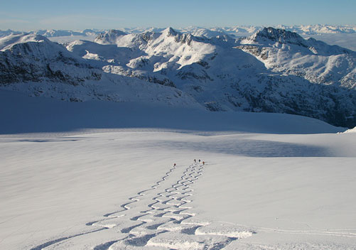 Whistler Heli Skiing - perfect for powder hounds