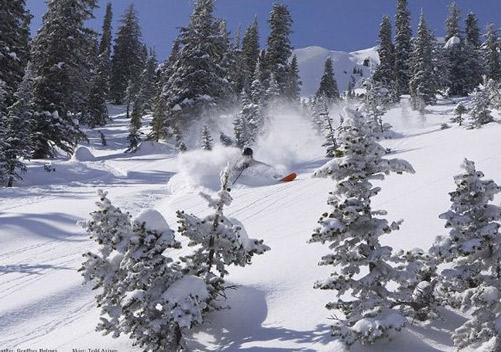Big Red Cats (Red Mountain BC) - the biggest cat skiing operation in the world