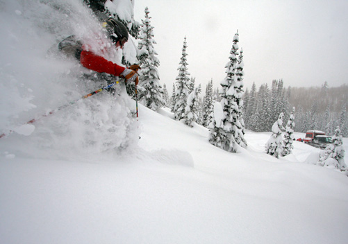 Steamboat Powdercats - rated #1 US cat ski operation by Powderhounds.com