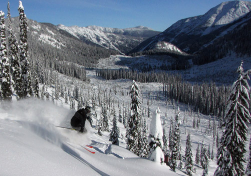 Wildhorse Catskiing (near Nelson BC) - great value & a great adventure