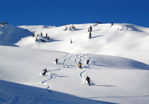Great Northern Snowcat Skiing BC - for those that just want to cruise