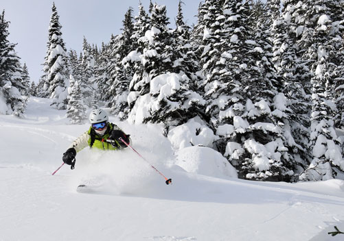 Skeena Cat Skiing BC - remote and wild