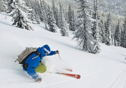 Valhalla Powdercats (Near Nelson BC) - cat skiing suitable for the Gods!
