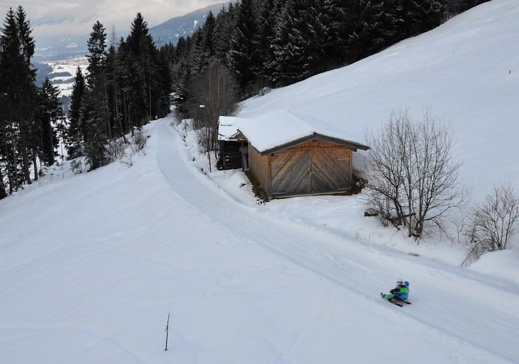 Enjoy a 10km sled run at Oberperfuss near Innsbruck.