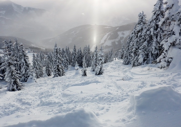 Off piste powder and tree skiing at Zell am See available for the adventurous.