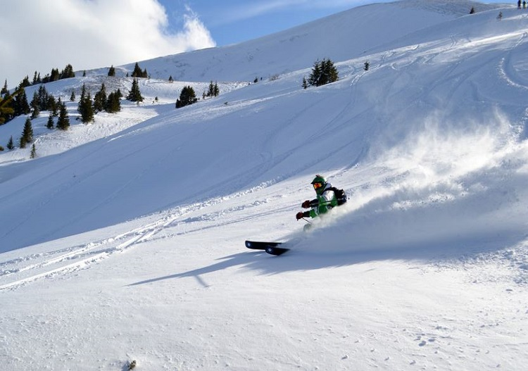 Eskimo Freeride cat skiing.