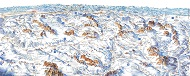 Dolomites Ski Resorts Map