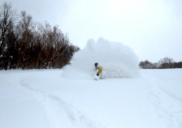 Japan cat skiing is all about the amazing powder