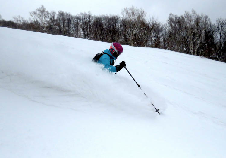 Cat skiing Japan: some operations are former ski resorts