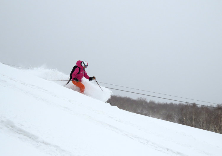 Niseko Cat Skiing Weiss: rather mellow terrain