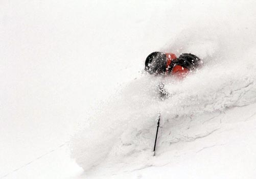 With Niseko cat skiing there's a good chance of chest deep powder