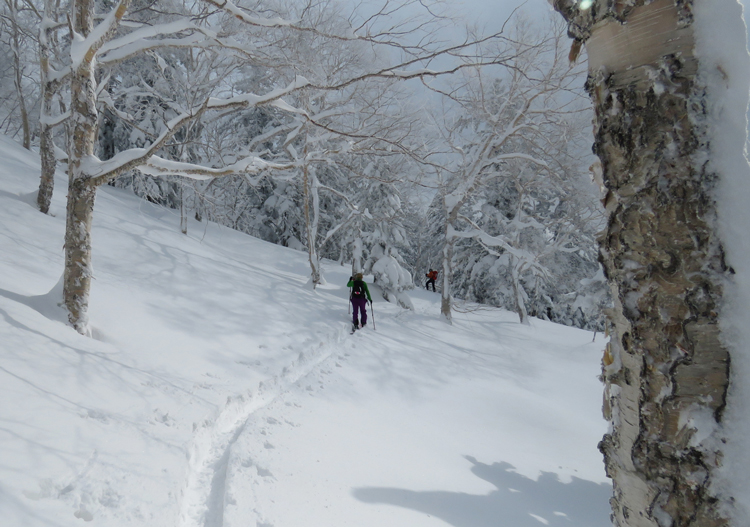 Central Hokkaido offers lots of backcountry touring opportunities