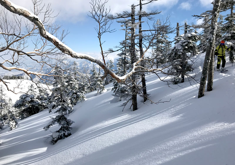 The top lift provides access to some great tree skiing