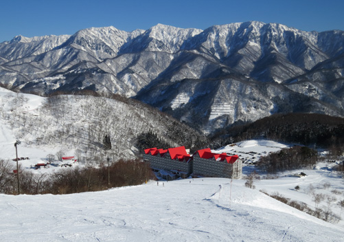 Looking up at the Nagano ski resorts