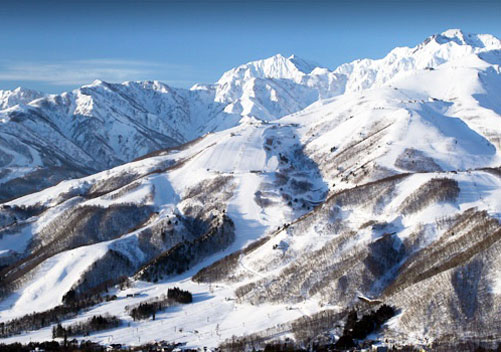 Sapporo Kokusai - best Japan ski resort award for side-country