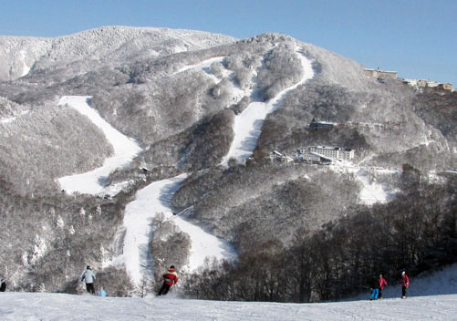 Shiga Kogen is a massive ski area great for beginners & intermediates