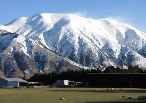 The Beautiful Backdrop of Mt Hutt