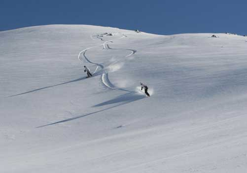 It's easy to find fresh lines on a powder day