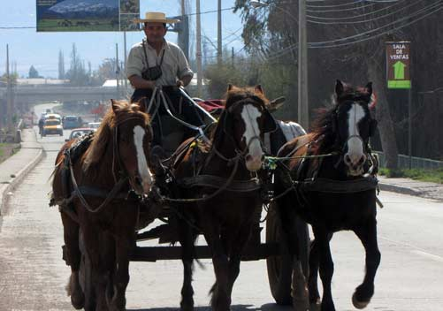 chilean culture and customs - photo #26