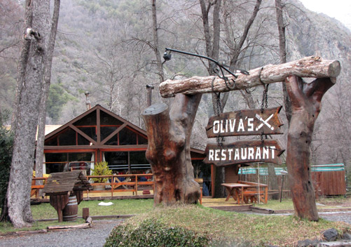 There are lots of restaurants in Las Trancas Chile