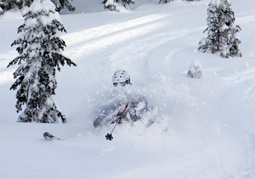 Steamboat Powdercats - click on the image for more information