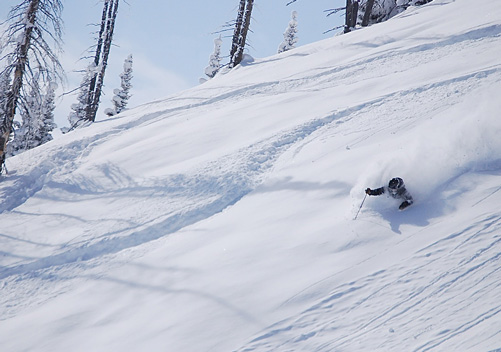 Powder Skiing in Montana