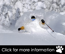 USA Ski Packages