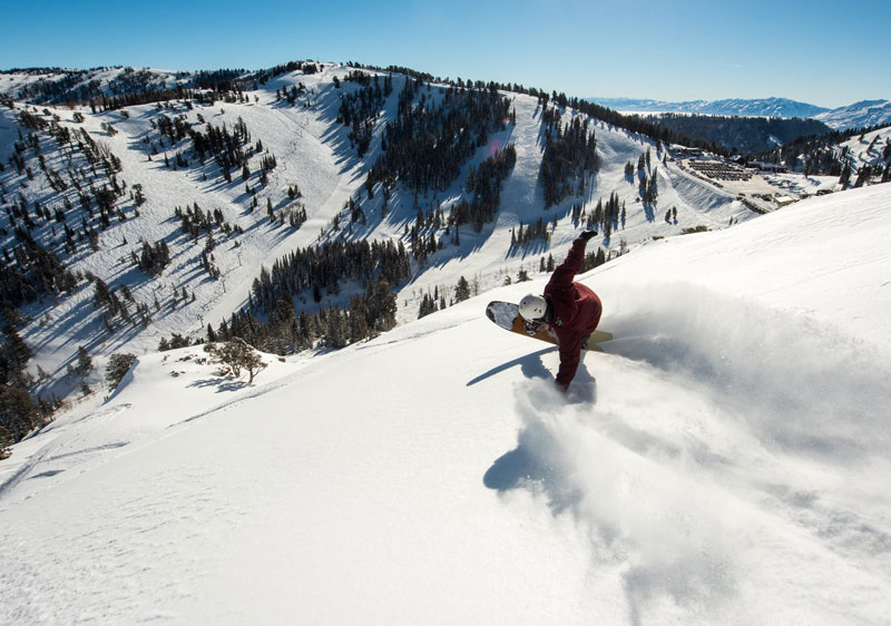 Snowbird rates very well for its powder snow